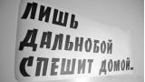 """Наклейка на авто """"Дальнобой"""""""