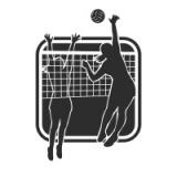 """Наклейка на авто """"Женский волейбол"""""""