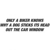 "Наклейка на авто ""Only a biker knows why"""