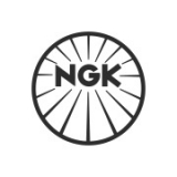 """Наклейка на авто """"NGK-2"""""""