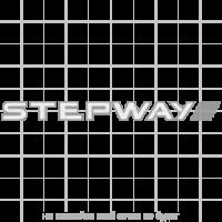 """Наклейка на двери """"Renault Stepway"""", двухцветная"""