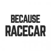 "Наклейка на авто ""Because Racecar"""