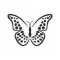 """Наклейка на авто """"Бабочка леопардовая"""""""