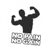 """Наклейка на авто """"No pain, no gain"""""""